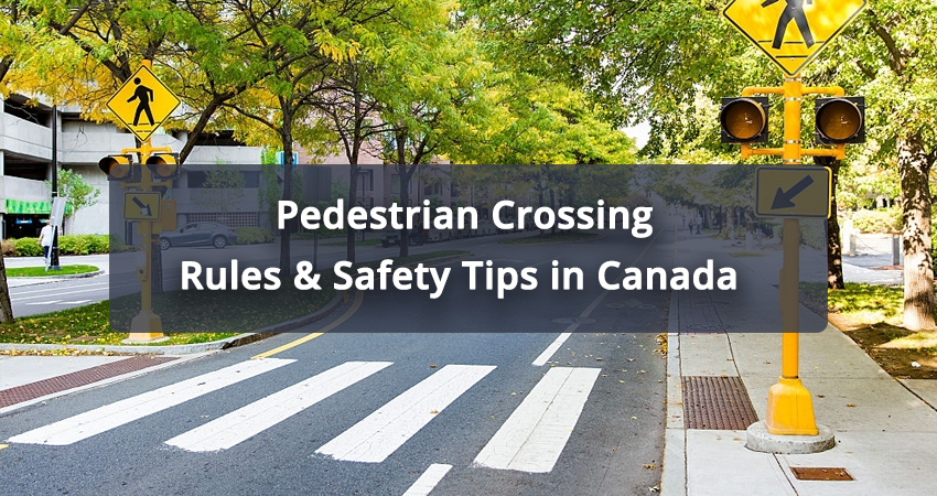 Pedestrian-Crossing-Rules-&-Safety-Tips-in-Canada